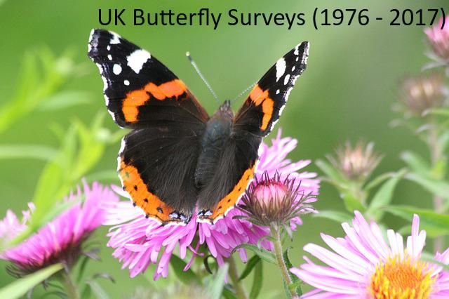 UK Butterfly Surveys 1976 - 2017